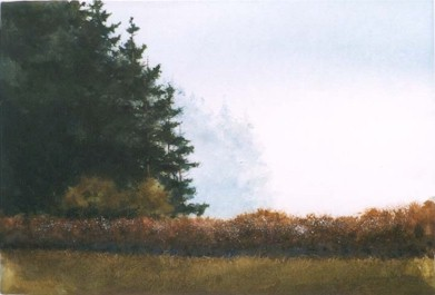 Snowberries - Original Etching 11 x 16